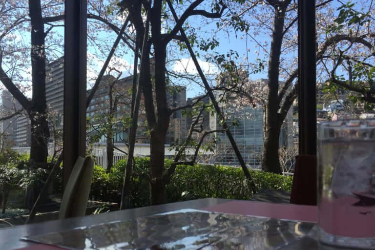 ワシントンホテル内シャンゼリゼからの桜
