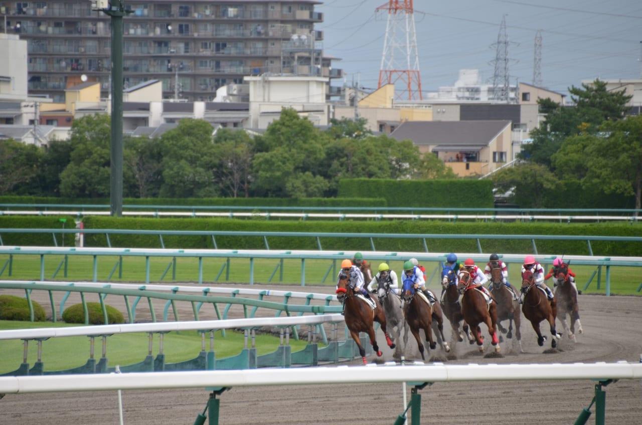 阪神競馬場イメージ
