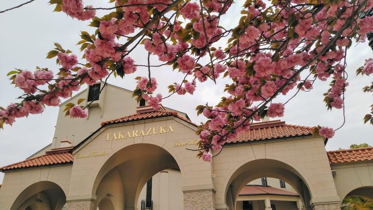 宝塚大劇場と八重桜