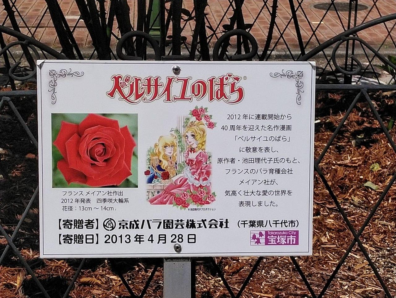 薔薇「ベルサイユのばら」