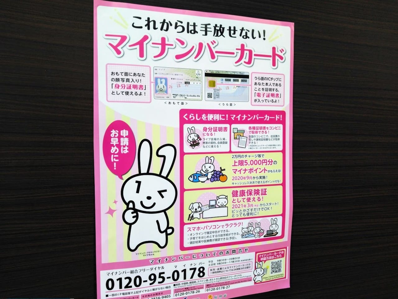 文京 区 マイ ナンバーカード